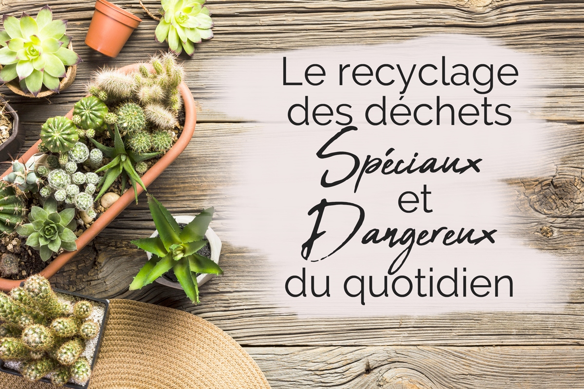 Recyclage des déchets spéciaux et dangereux du quotidien