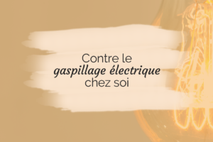 Contre le gaspillage électrique chez soi